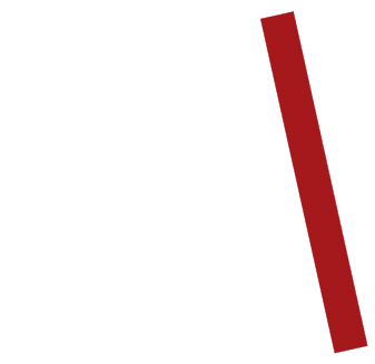 logo-stviborg
